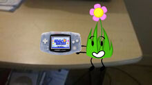 Flower Grassy Playing Warioware in the Real World