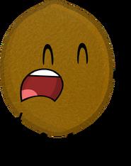 KiwiPose