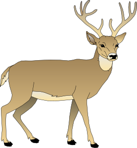 image deer clip art deer05 clipart free png object shows rh objectshowfanonpedia wikia com deer clip art free images deer clip art png