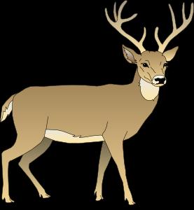 image deer clip art deer05 clipart free png object shows rh objectshowfanonpedia wikia com clip art of deer eating crops clip art of deer antlers