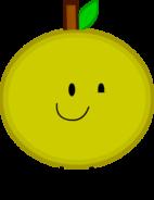 Grapefruit P