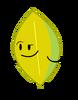 Yellow Leafy (New)