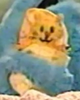 Kitty (Bear in the Big Blue House)