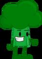 Broccoli (OPR Pose)
