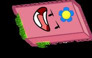 Hawaii Eraser