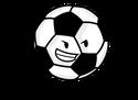 Soccer Ball FR
