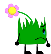 Flower Grassy Sad with tear