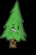 Tree Posez