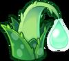 Aloe Asset