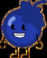 Blueberry (2)
