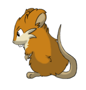 Gift carrot the raticate by mhonline1-d66kq4j