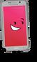 Phone Rig