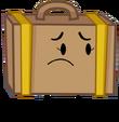 Sad Suitcase Pose