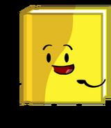 Workbook (Pose)
