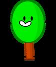 Oak Pose