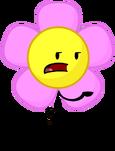 Flower (BFCK)