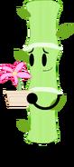 Bamboo - Szapka (Pose)