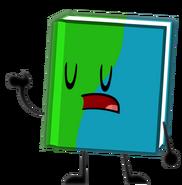 11. Book