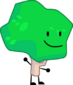 Wow it's a tree but it's new