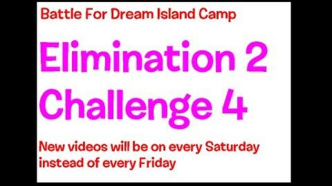BFDI II Camp 3C 4A Groups of Two