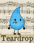 BBFDI-Teardrop