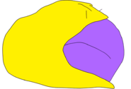 PFGEBYF.PNG