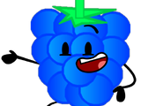 Blue Raspberry/Gallery