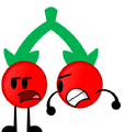 Cherries Poster Pose