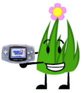 Flower Grassy with a GBA