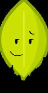 Object-Oppose Leaf Pose