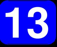 13 asset
