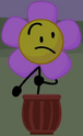 Flower in the pot (BFB 20)