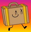 49. Suitcase