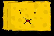 SpongyBFPI