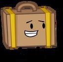 Suitcase2013