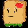 Hawaii Woody