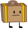 Pinga Suitcase