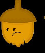 Acorn (OLD Pose)