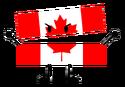 BFDI Canada