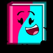 Rose & Aqua Book