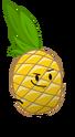 SL Pineapple Pose