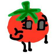 Tomato BOVI