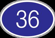 New36Body