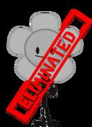 New Flower eliminated