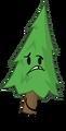 Tree Pose II