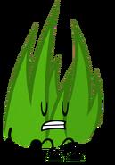 GrassyPose(Teal)