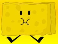 94. Spongy