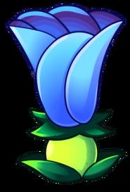 OCS-Moonflower(Asset)