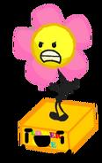 Flower Cake NOPE