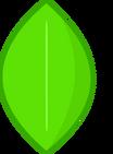 1000px-Leafy Icon copy